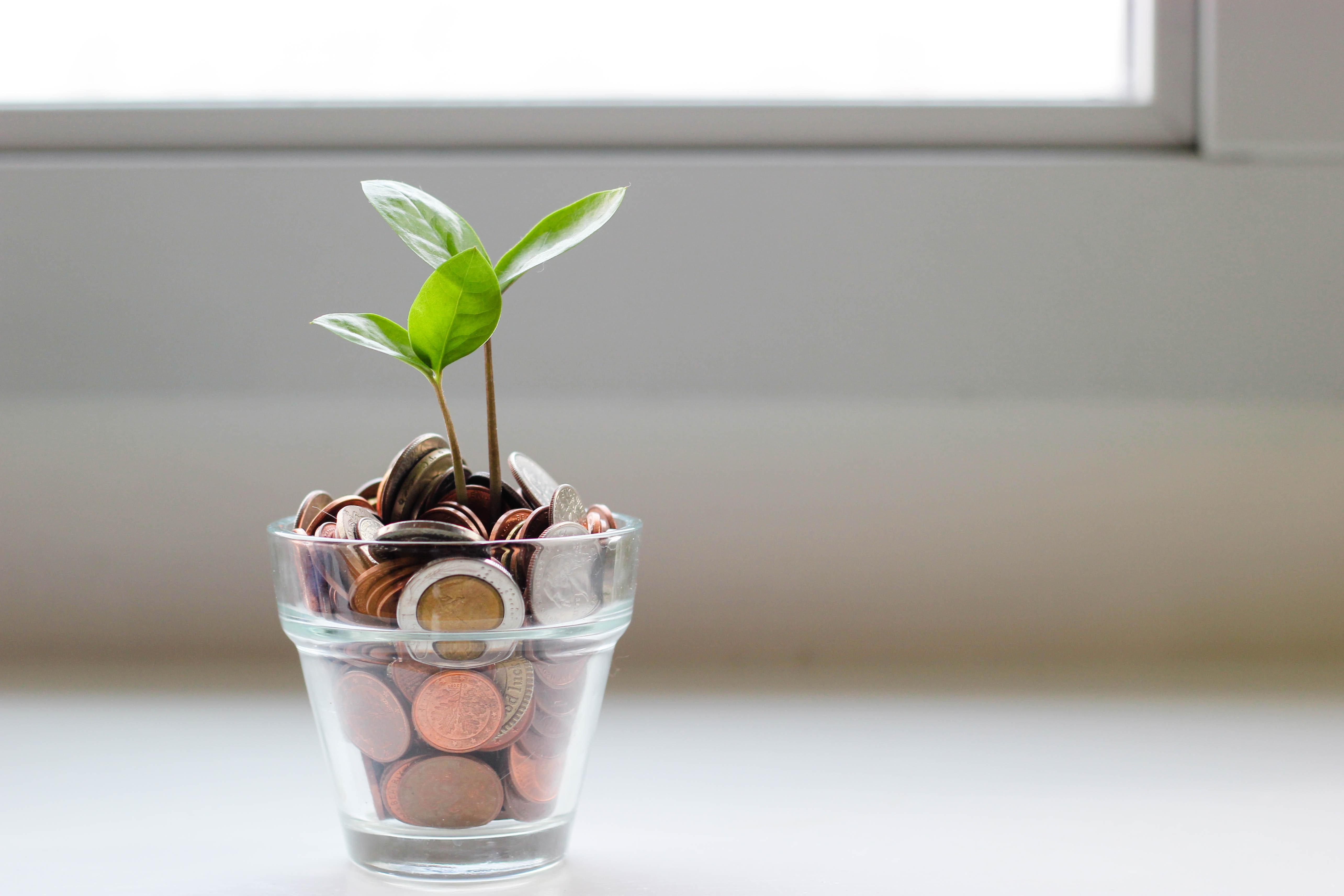 Interest-Free Loans