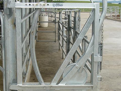 Cam Action Headlock Gate