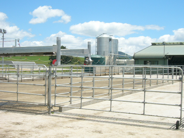 Yard Gates and Hardware