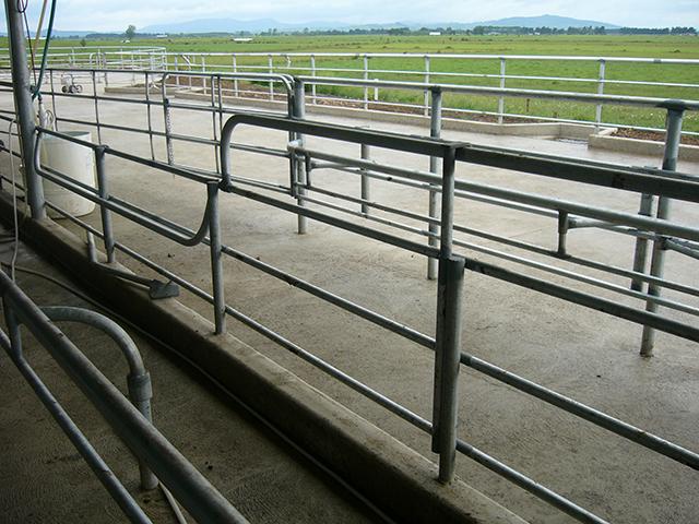 Livestock Handling