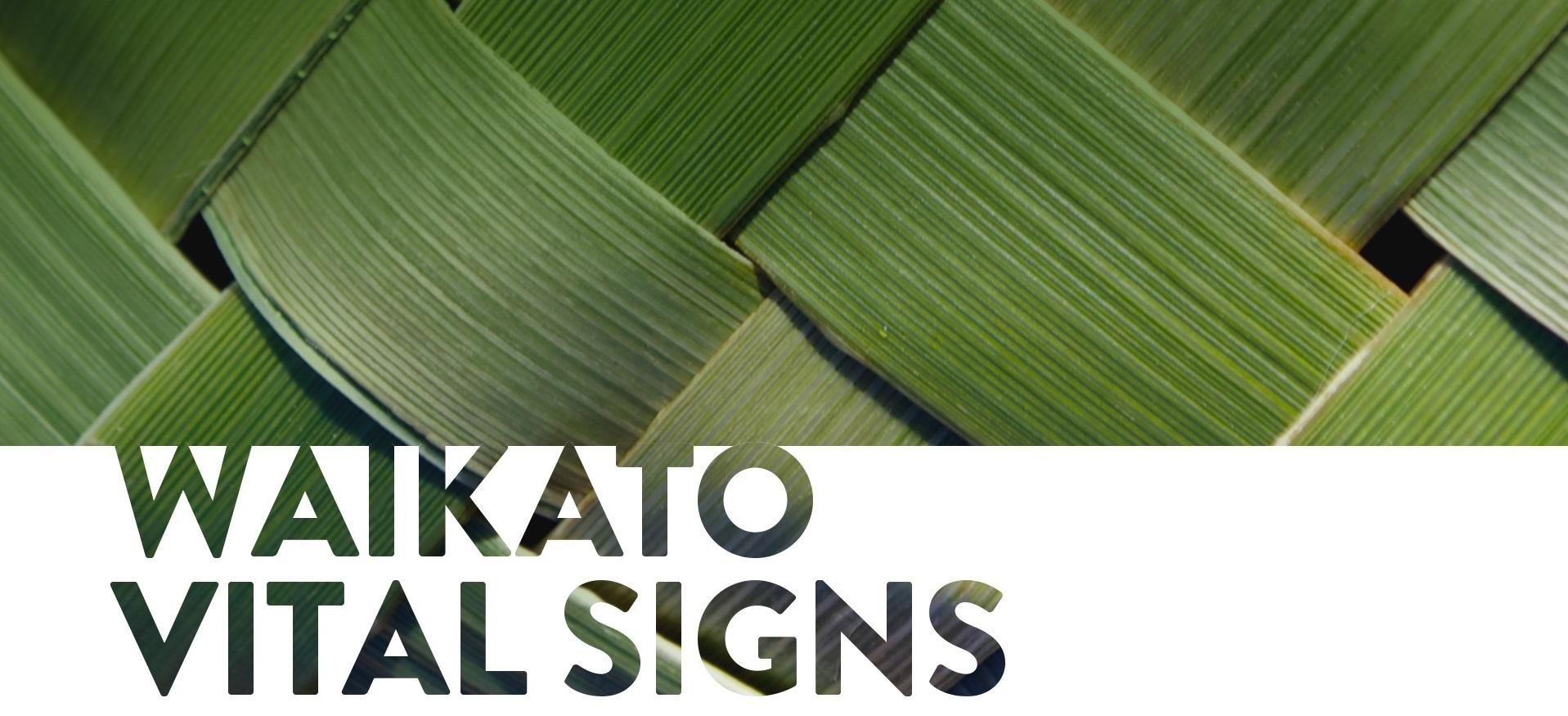 Waikato Vital Signs