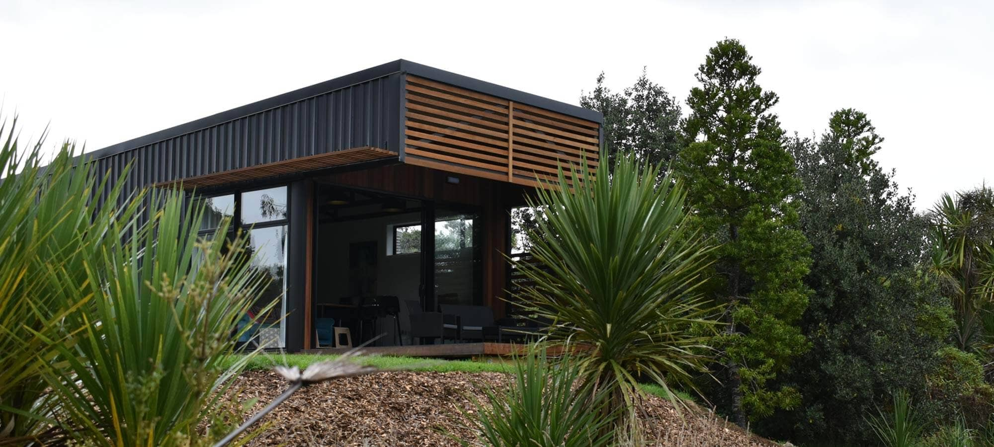 Kauri Tree Front view